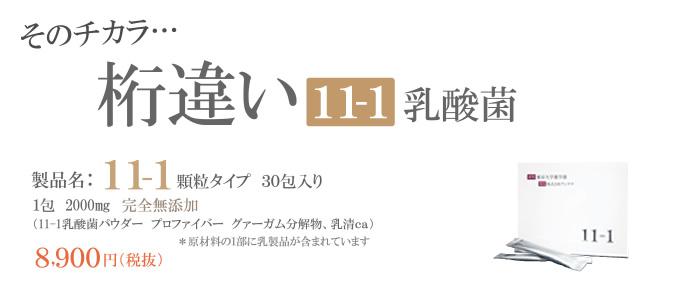11−1乳酸菌 顆粒タイプ30包入り