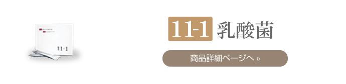 11−1乳酸菌-一覧